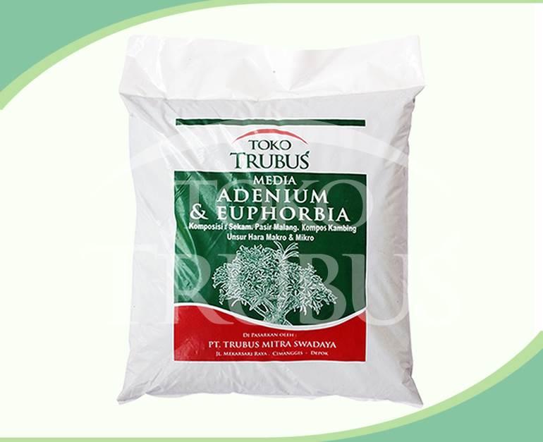 Adenium & Euphorbia